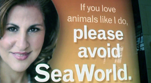 Kathy Najimi anti-SeaWorld Ad for PETA, Lindbergh Field, San Diego, CA, undated/NBC 7 San Diego