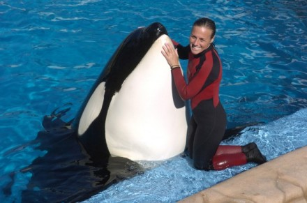 Dawn Brancheau and unidentified captive orca, SeaWorld Orlando, Dec 30 2005/Julie Fletcher, Orlando Sentinel, Getty, National Geographic