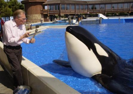 Larry King and unidentified captive orca at unidentified SeaWorld Park, 2001/Getty, Slate
