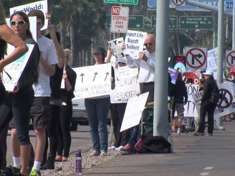 Protesters outside SeaWorld San Diego, Feb 16, 2014/ABC 10 News