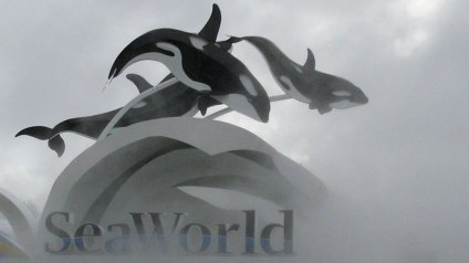 SeaWorld Sign/Reuters, Fox Business