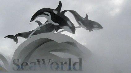 SeaWorld Sign/Reuters, Fox Business