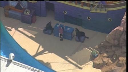 """""""Clyde and Seamore Take Pirate Island,"""" SeaWorld Orlando, undated/Click Orlando"""