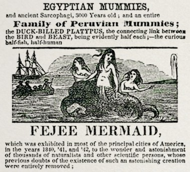 Advertisement for P.T. Barnum's Feejee Mermaid Exhibit, Summer 1842 / Hakai Magazine / Click for more.