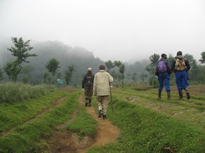 Gini, guide and porters walking through farmland in Bisate on way to Volcanoes NP border and start of Karisoke climb