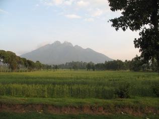 View of Mt. Sabyinyo on way to start of gorilla trek, Kinigi