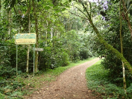 Bwindi sign, morning bird walk, Bwindi Impenetrable NP