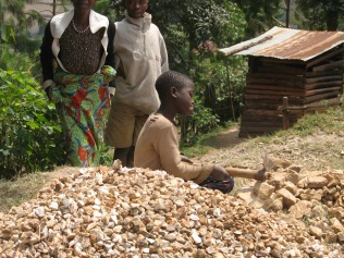 Boy breaking rocks for gravel, road to Bwindi