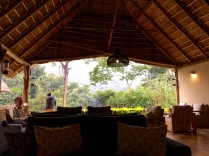 Relaxing in lounge, waiting for Marc to return from second gorilla trek, Sanctuary Gorilla Forest Camp, Bwindi Impenetrable NP