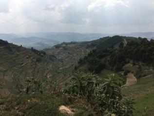 Vista, road to Bwindi
