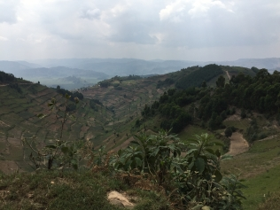 Vista, road to Bwindi