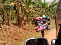 "Man with ""mobile store"" on his back, road to Crater Safari Lodge"