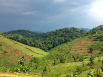 The Heart of Uganda, road to Bwindi