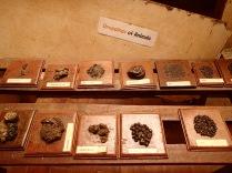 Animal dung display, Entebbe Zoo