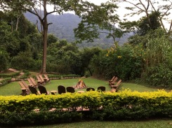 Lawn chairs around fire pit, Sanctuary Gorilla Forest Camp, Bwindi Impenetrable NP
