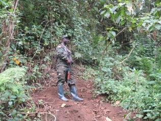 One of the rangers accompanying us on Karisoke climb