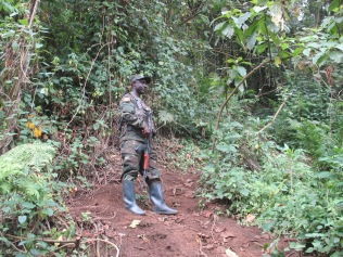 One of the rangers accompanying us on Karisoke climb