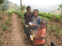 Kids along the trail with food given to them by trekkers, Bwindi Impenetrable NP