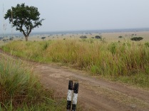 Road to Kaymbura Gorge, Queen Elizabeth NP