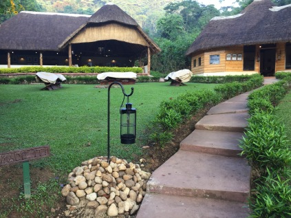 Parting glance back at Sanctuary Gorilla Forest Camp, Bwindi Impenetrable NP