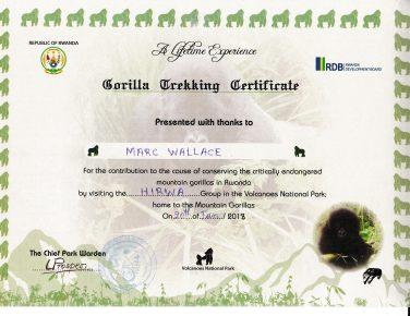 Marc's Trekking Certificate; Gini received one, too. Volcanoes National Park headquarters, Kinigi