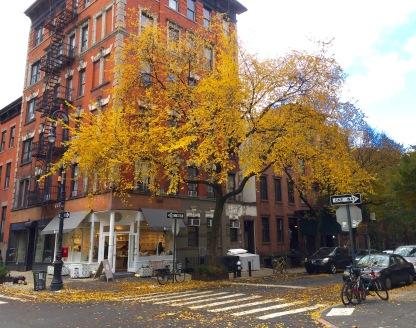 Greenwich Village, Saturday 11/3/18