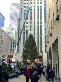 Rockefeller Center, Saturday 11/10/18