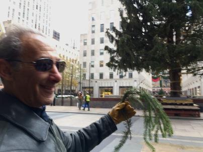 A piece of the tree, Rockefeller Center, Saturday 11/10/18