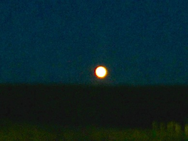 Rising Harvest Moon, Millbrook, NS, Friday, September 13, 2019