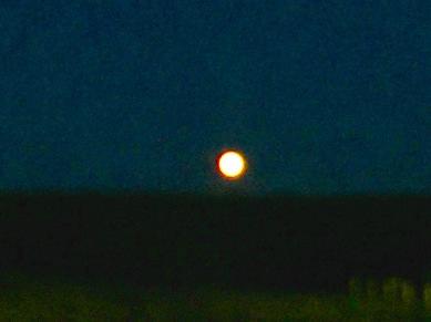 Rising Harvest Moon, Millbrook, NS, Friday, September 13, 2019